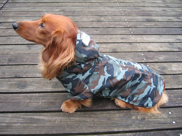 犬用 レインコート