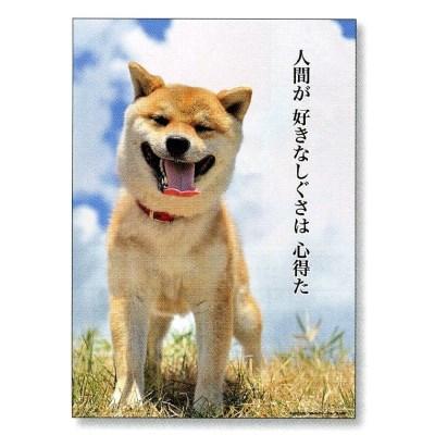 犬の手帳 B6ブックダイアリー(犬川柳)